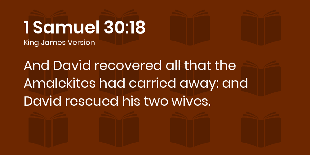 1 Samuel 30:18 KJV - And David recovered all that the Amalekites had  carried away: and David rescued his two wives.